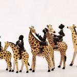 Alex_Sibanda_Girafas