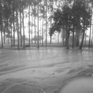 Chuva na terra seca de Pernambuco.