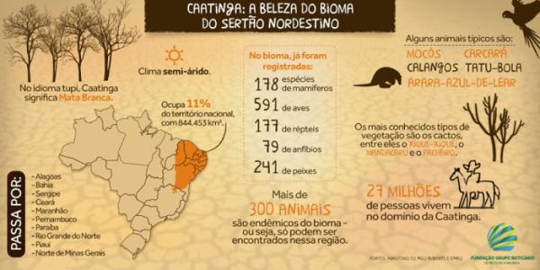 Fonte: Fundação Boticário