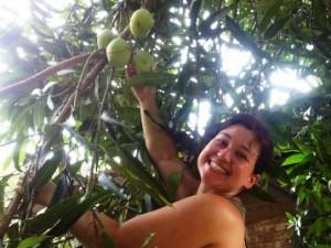 Centro Canaa - mangueira
